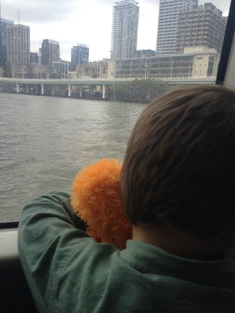 CityCat Ferry : Watching the view