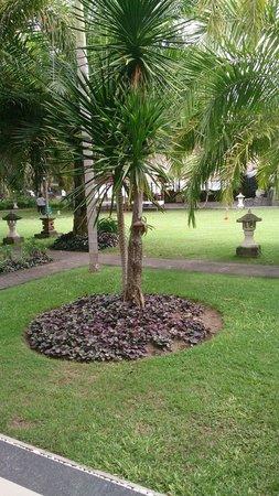 Inna Sindhu Beach: View from our room towards beach