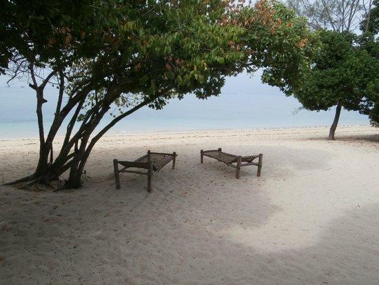 Chapwani Private Island: Devant le lodge