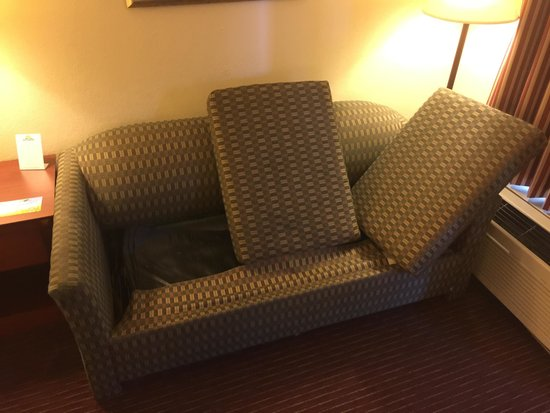Days Inn by Wyndham Dothan: Couch was so badly stained. Under cushions there were numerous fluids. Found blood. Rat dropping