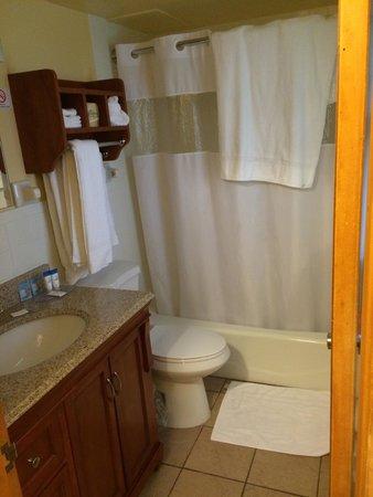 All Star Inn & Suites: Bathroom