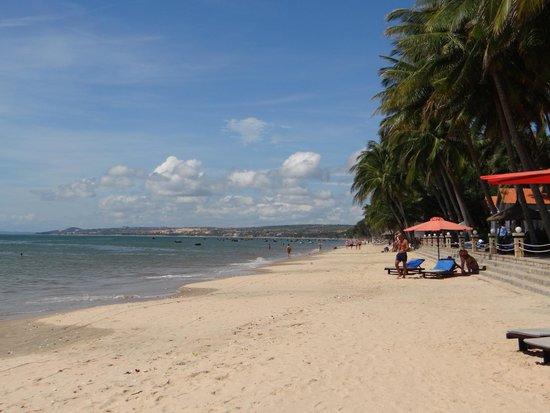 MuiNe deCentury Beach Resort & Spa: Beach