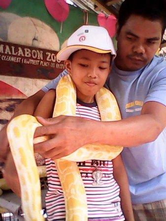 Malabon Zoo: Albino Python