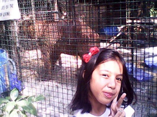 Malabon Zoo and Aquarium : Picture taking with fee!!! - Malabon Zoo, Malabon - TripAdvisor
