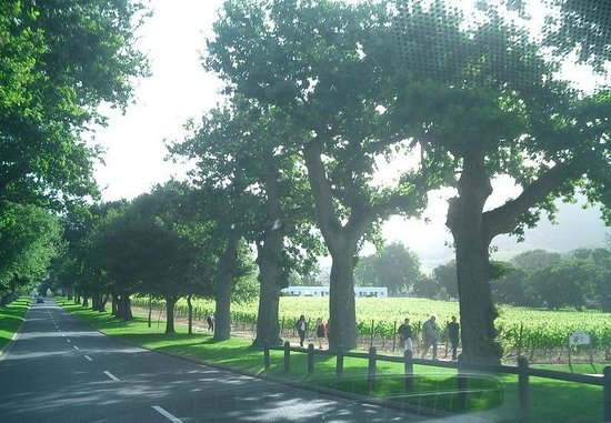 view of the road towards Simon's Restaurant