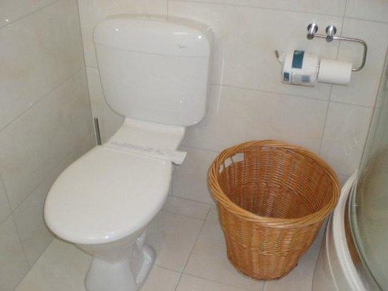 BEST WESTERN Newmarket Inn & Suites: Room 15 Toilet