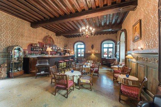 Francois 1er - Chateau de Coudree: bar Renaissance au château de Coudrée
