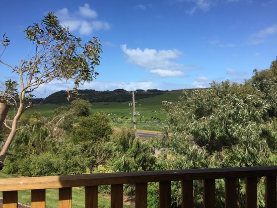 Daysy Hill Country Cottages: View from balcony
