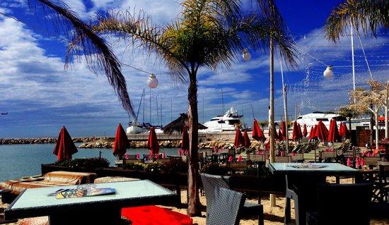Beach club st laurent du var restaurant reviews phone - Restaurant indien port saint laurent du var ...