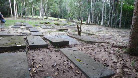 Jodensavanne: Besides the ruins of the synagogue, there is a Jewish cemetery.