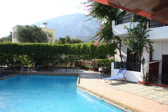 Hotel Mary: Pool area