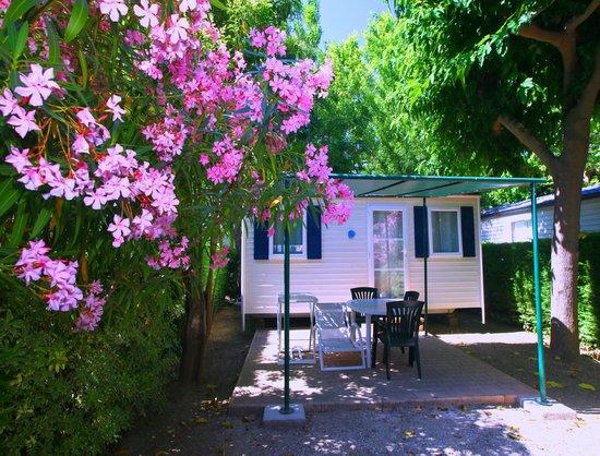 Camping Catalan