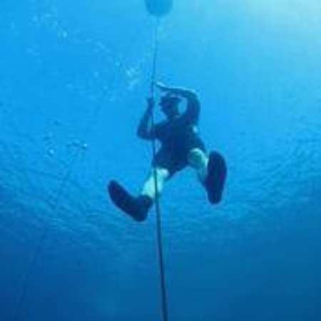 One Breath Freediving: Free immersion