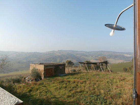 Agriturismo Colle Regnano: Monti sibillini e campagna intorno