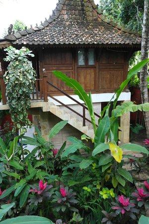 Desa Sanctuary, The Village: casa desa sanctuary