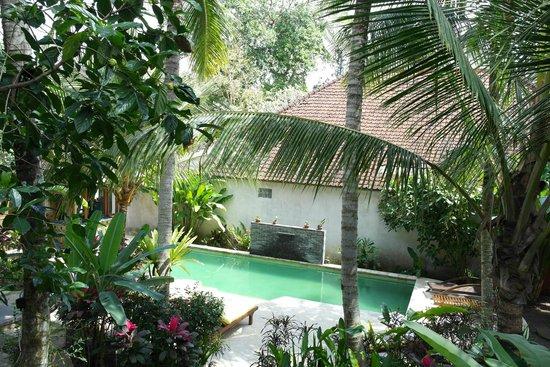 Desa Sanctuary, The Village: piscina e giardino