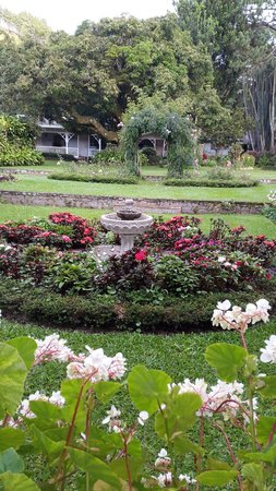 Hotel Panamonte: Jardines agradables