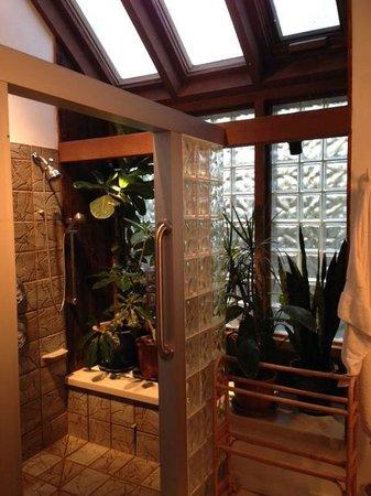 Alpenhof Bed and Breakfast : Bathroom suite