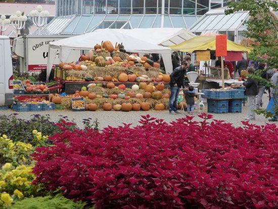 Grugapark Essen: die volle Pracht
