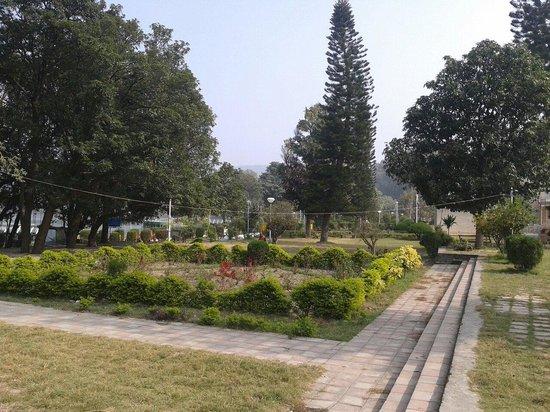 Mansar Lake: Garden