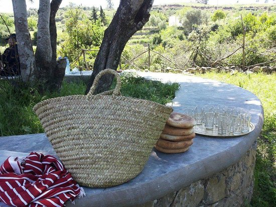 Auberge Dardara: a picnic for lunch time on the grounds of the inn (auberge)
