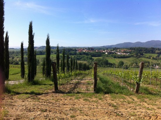 Borgo di Casagrande: Виды