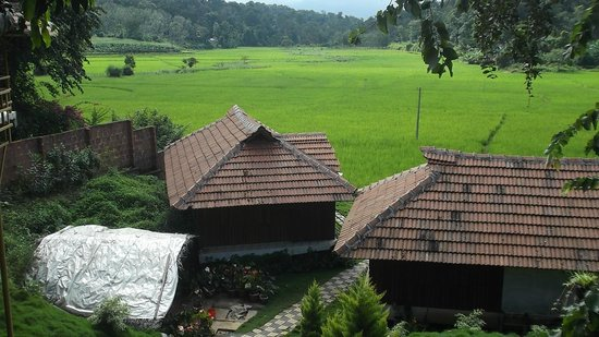 Pepper Green Village: View from Rooms near Dining Hall