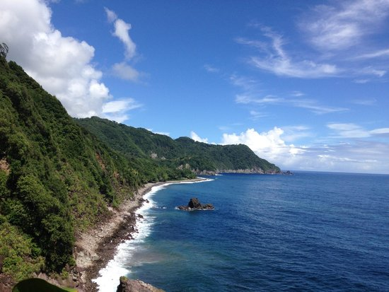 Jungle Bay, Dominica: Vue vers Jungle Bay
