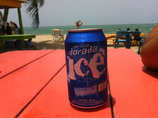 Tipsy Tuna: Having a cold one by the beach