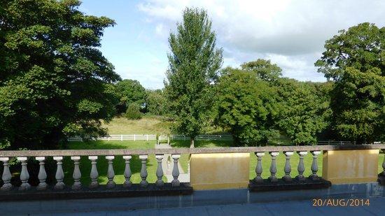 Athenaeum House Hotel: Aussicht in den Garten