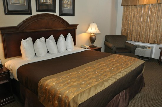 BEST WESTERN Inn of McAlester: Our king room was nicely appointed and clean, although a bit small for the size of furniture.