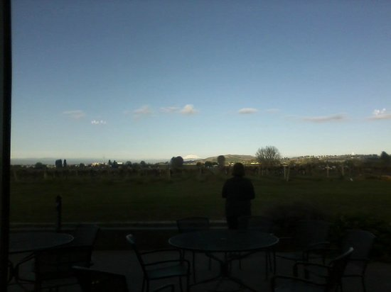 Best Western Plus Grapevine Inn: The view from the patio.