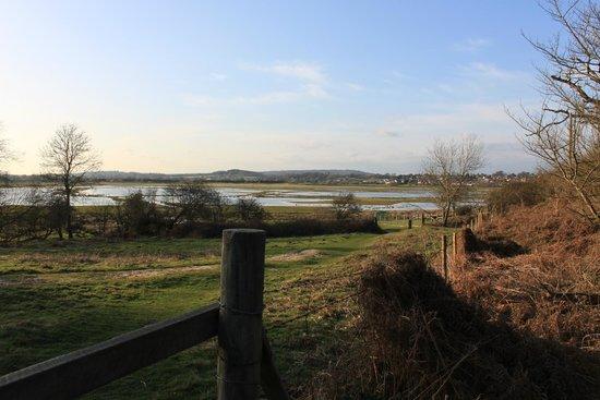 Pulborough Brooks RSPB: A view of Pulborough Brooks