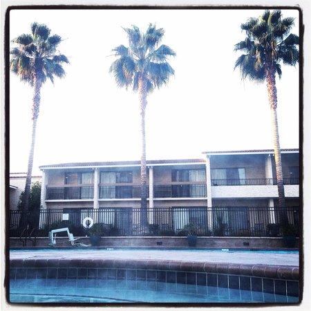 Santa Clara Marriott: Morning dip in the hot tub!