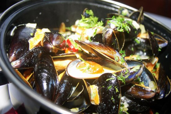 Saxtys: Moules