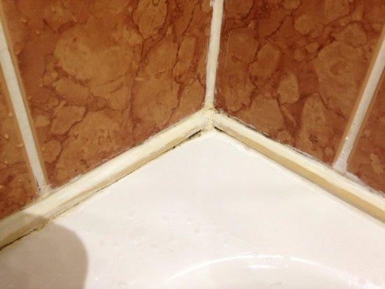 BEST WESTERN PLUS Orton Hall Hotel: Bathroom