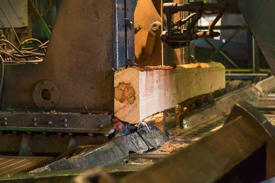 Forks Lumber Mill Tour: Sawing the logs into slabs