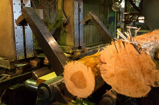 Forks Lumber Mill Tour: Loading logs into first sawing operation