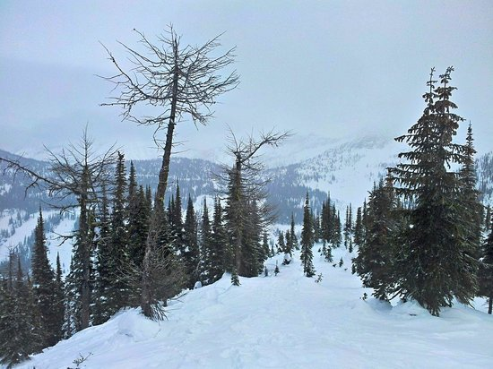 Whitewater Ski Resort : powder