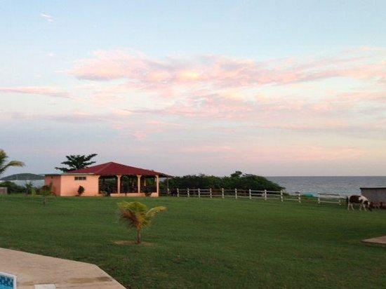 Hector's by the Sea: foto de una de las cabanas