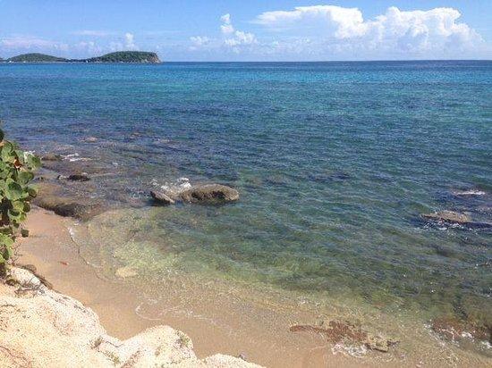 Hector's by the Sea: foto de la vista al mar