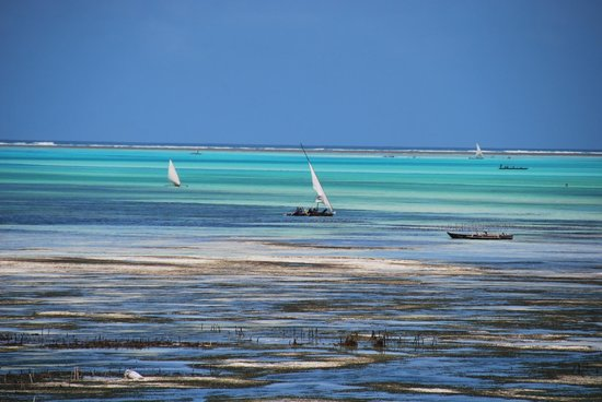 Mamamapambo Boutique Hotel : Boats sailing around the lagoon from the beach in front of the hotel