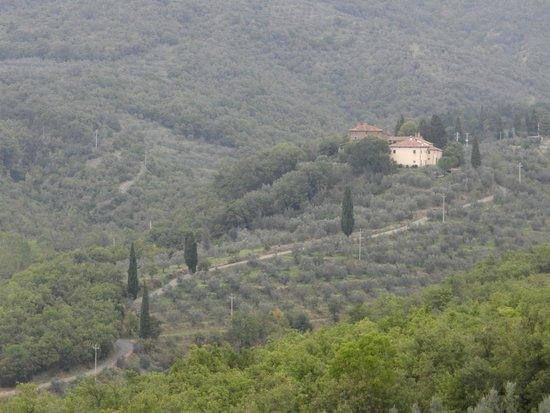 Relais San Pietro in Polvano: View of Relais