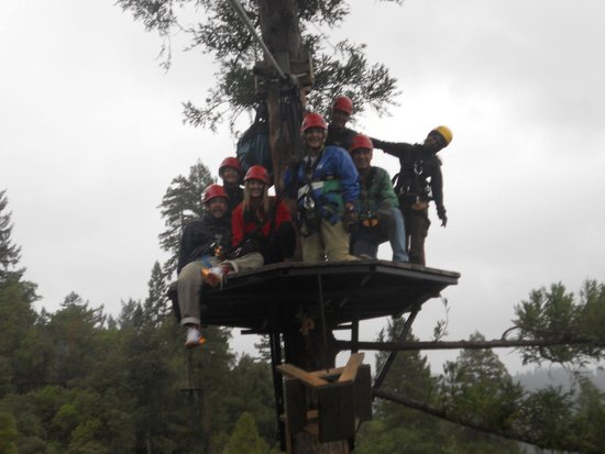 Sonoma Canopy Tours: High in the trees. Guide Donna in the yellow helmet.