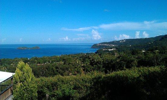 Guadeloupe Picture Of Le Jardin Tropical Bouillante Tripadvisor