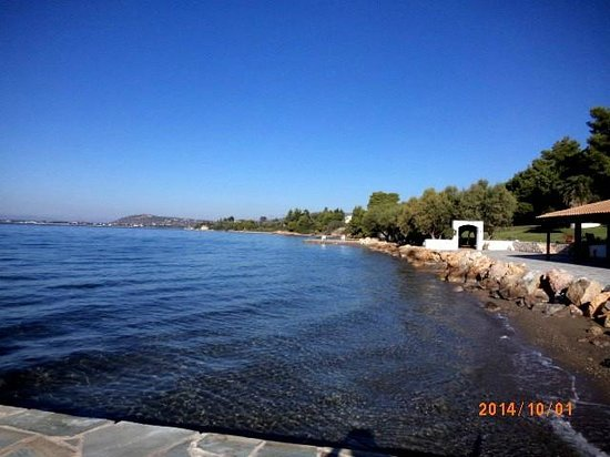 Holidays In Evia & Eretria Village Hotels : пляж отеля