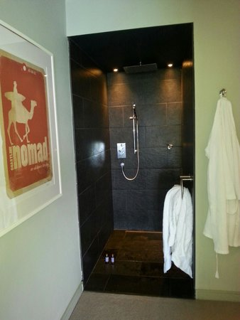 Lewinnick Lodge: walk in wet room/ shower