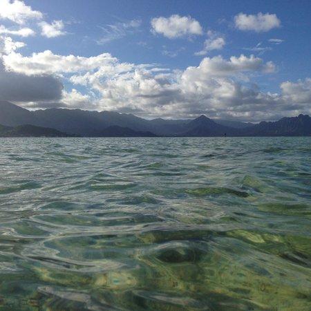 Lanikai Beach Rentals LLC : view from the water