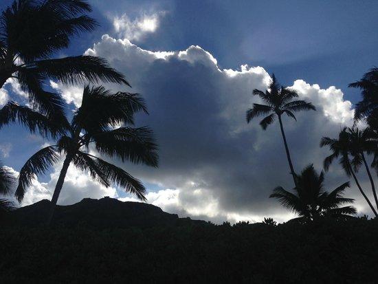 Lanikai Beach Rentals LLC : sun rise