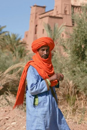 Best of Morocco Tours